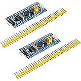 HiLetgo 2個セット STM32F103C8T6 ARM STM32 Minimum システム 開発ボードモジュー…