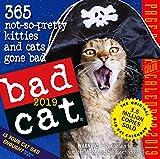 Bad Cat Color Page-A-Day デスクカレンダー 2019 [6インチ x 6インチ]