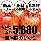 無農薬・無肥料 りんご サンふじ林檎 3kg ★「奇跡のリンゴ」で有名な木村秋則さん指導のもと完成した無農薬リンゴ