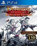 Divinity Original Sin Enhanced Edition (輸入版:北米)