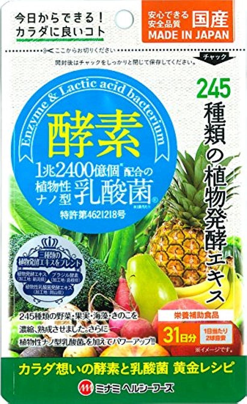 酵素 植物性ナノ型乳酸菌 62球入【約31日分】