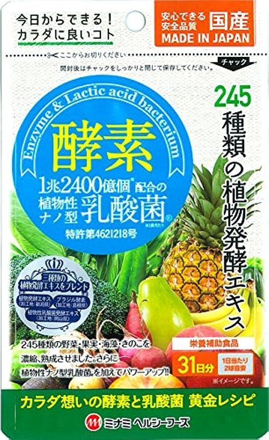 チェス非効率的な草酵素 植物性ナノ型乳酸菌 62球入【約31日分】