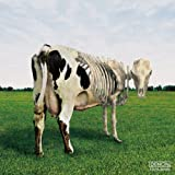 原子心母の危機 Atom Heart Mother is on the edge