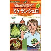 【種子】 Gusto Italia カリフラワー カーヴォルフィオーレ (ロマネスコタイプ) ミケランジェロ トキタのタネ