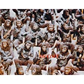 大きな写真「猿の惑星」猿、猿、猿。