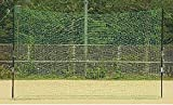 ZETT(ゼット) 野球 バックネット (ポール付き) BM9037