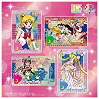 カードダス30周年記念 ベストセレクションセット 美少女戦士セーラームーン カードダスver.
