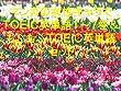 マンガの女性キャラでTOEIC英単語1~7巻&もふもふTOEIC英単語セット