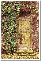 barewalls 古いドア ペーパープリント ウォールアート 24in. x 16in.