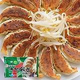 マルマツ どうまい浜松餃子(野菜) 15個×5パック 75個 加熱済み冷凍餃子 工場直送