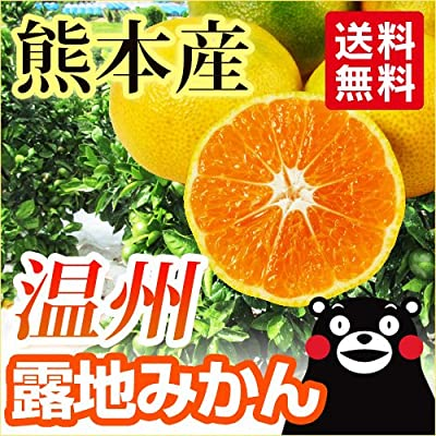 熊本県産 こだわり温州みかん 5kg 本当のミカンの味を楽しみませんか?露地みかん【九州 熊本】