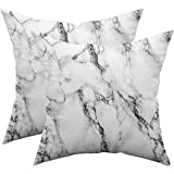 TAOSON Set of 2 Home Decorative Marble Pattern Cozy Throw Pillow Cases Cushion Covers Shells for Couch Bed Sofa Farmhouse Man