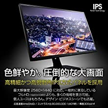 iiyama WQHD モニター ディスプレイ XB3270QS-B1 (31.5インチ/WQHD(2560x1440)/IPS/DisplayPort,HDMI,DVI-D/昇降/3年保証)