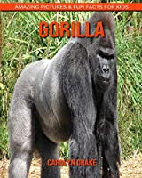 Gorilla: Amazing Pictures & Fun Facts for Kids