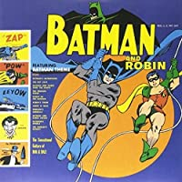 Batman & Robin [12 inch Analog]