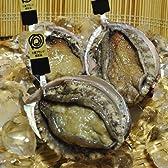 三重ブランド認定タグ付き  海女漁の特選活あわび500g (御祝のし 【結婚以外】)