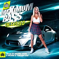 VARIOUS ARTISTS - MINISTRY OF SOUND: MAXIMUM BASS UNLEASHED (1 CD)
