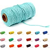 Macrame Cotton Cord 2mm 109 Yard Cotton Rope Colored Craft Cord for DIY Crafts Plant Hangers (Light Blue)