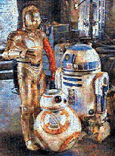 Buffalo Games Droids of the Re...