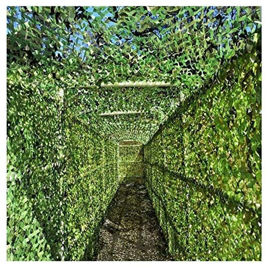 トランペットエキス日曜日庭迷彩ネット、2メートル×3メートル日焼け止めネットオックスフォードグリーンオーニングバルコニープライバシー保護壁の装飾車のカバー植物カバー狩猟写真 (Size : 2*3m(6*10ft))