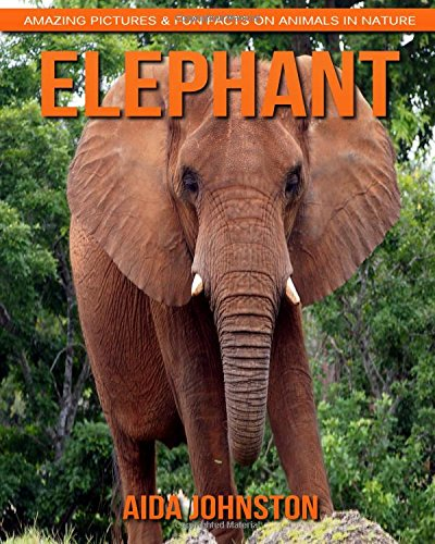 Elephant: Amazing Pictures & Fun Facts on Animals in Nature