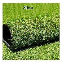 XEWNEG 人工芝、30mmパイルの高さ、暗号化されたグリーンのプラスチックカーペット人工芝ウェディング会場ガーデンバルコニー装飾偽造芝生 (Size : 2x6m)