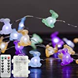 Gaudiwel Easter Decorations Lights, 10ft 40 LED Easter Decor String Light, Battery Operated, Remote Control, with Timer, Wate