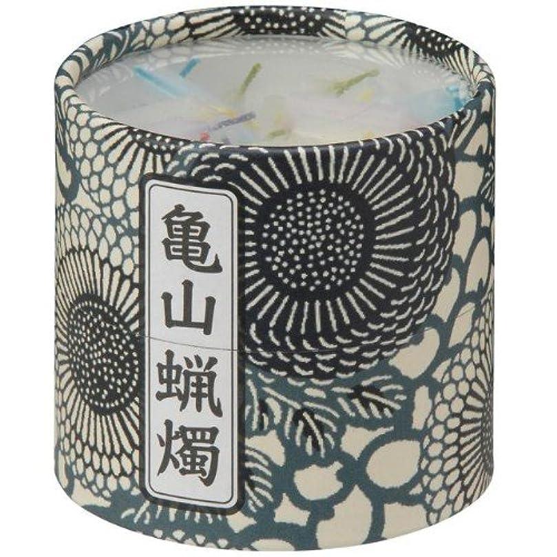 全国消化器遺伝的亀山五色蝋燭(小) 約130本入り
