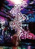 47都道府県単独巡業千秋楽「龍跳孤臥」〜二〇一五年七月三十一日 日本武道館〜【初回限定盤】