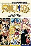 One Piece (Omnibus Edition), Vol. 22: Includes Vols. 64, 65 &66 (22)