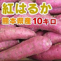 熊本産 さつまいも「 紅はるか 」 ( サイズ混合 ・ 訳あり品 ) 10キロ 【 九州 熊本 野菜 根菜 紅 ハルカ いも イモ 芋 スイーツ 焼き芋 おやつ 】