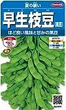 サカタのタネ 実咲野菜7377 早生枝豆(黒豆) 夏の装い 00927377