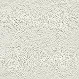 サンゲツ 壁紙20m シンプル  ホワイト 塗り・石目 SP-9905