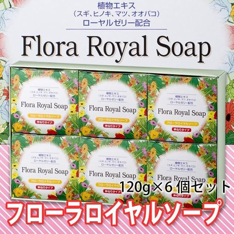 洗剤その後慎重【純正品】フローラロイヤルソープ6個セット