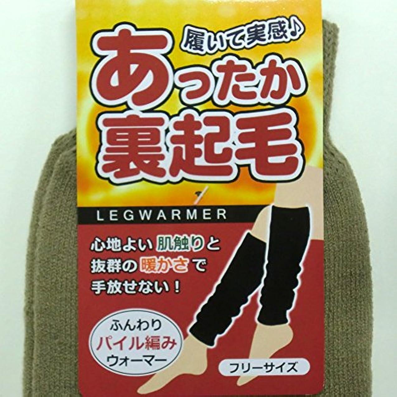 あったか ロング レッグウォーマー 45cm丈 裏起毛 パイル編み カプサイシン加工 男女兼用 2足組(柄はお任せ)