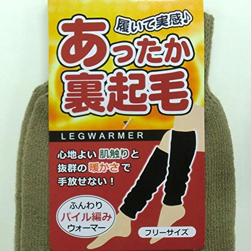 惑星洋服バーガーあったか ロング レッグウォーマー 45cm丈 裏起毛 パイル編み カプサイシン加工 男女兼用 2足組(柄はお任せ)