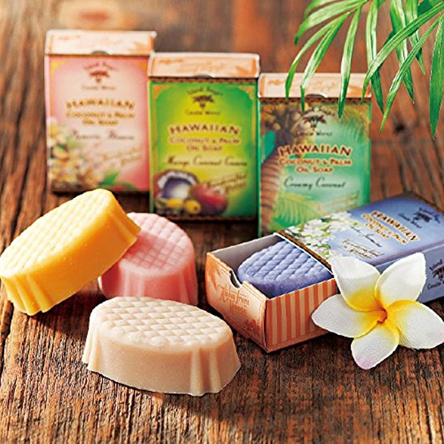 黒休み一口[ハワイお土産] アイランドソープ ココナッツソープ 4種セット (海外 みやげ ハワイ 土産)