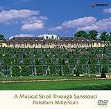 サンスーシ宮殿の栄光と音楽家たち