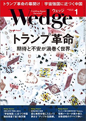 Wedge (ウェッジ) 2017年 1月号 [雑誌]の詳細を見る