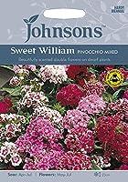 【輸入種子】Johnsons Seeds Sweet William Pinocchio Mixed スイート・ウイリアム(なでしこ) ピノキオ・ミックス ジョンソンズシード