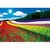1000ピース ジグソーパズル 富良野の花畑 マイクロピース (26x38cm)