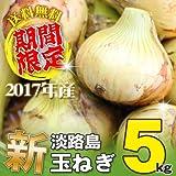 淡路島産 2017年 新玉ねぎ 5kg 淡路島玉ねぎ