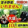 熊本産・九州産 野菜セット 定番 旬野菜 10品以上