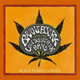 Black Power Flower [12 inch Analog]