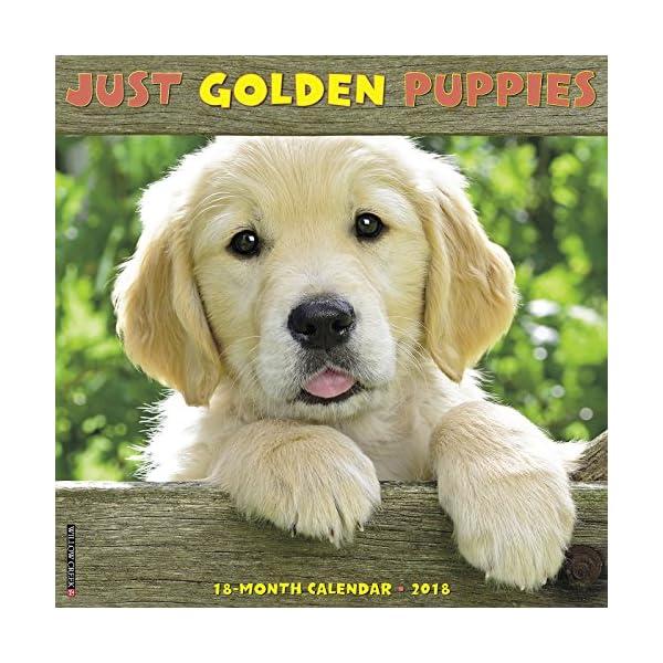 Just Golden Puppies 2018...の商品画像