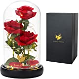 Beauty and The Beast Rose, Enchanted Red Silk Rose Forever Flower with Fallen Petals in A Glass Dome, Home Office or Home Dec