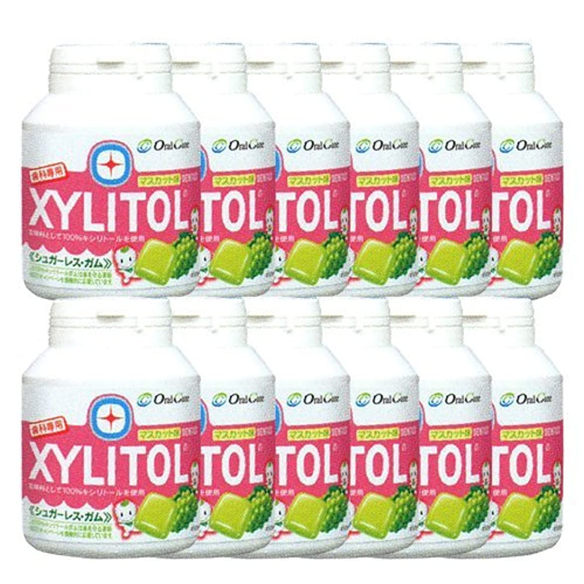 しっかりサンプルパケット歯科専売品 キシリトール ガム ボトル タイプ 90粒×12本 マスカット キシリトール 100%