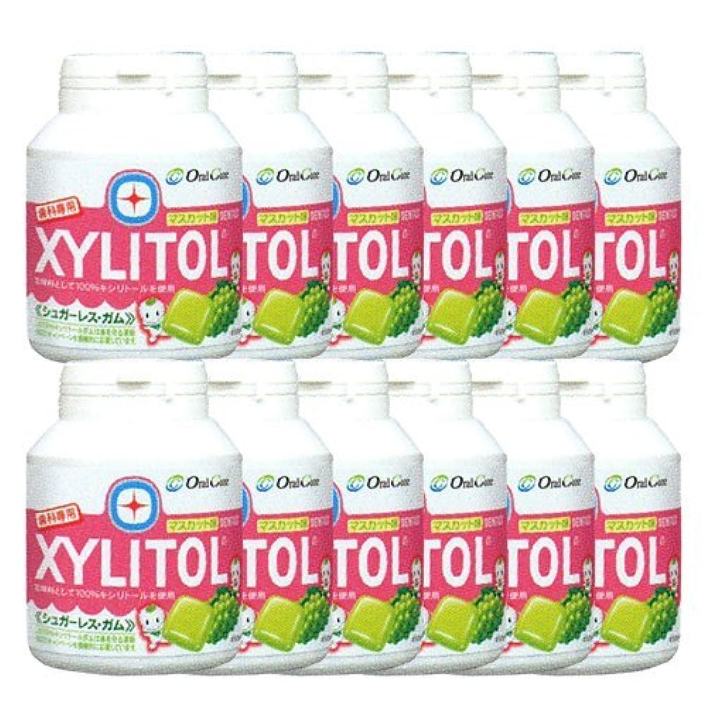 確執技術的なバックグラウンド歯科専売品 キシリトール ガム ボトル タイプ 90粒×12本 マスカット キシリトール 100%