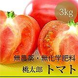 桃太郎トマト 3kg 沖縄県産・無農薬・無化学肥料・還元力(抗酸化力)+121mV