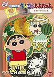 クレヨンしんちゃん TV版傑作選 第12期シリーズ 10 キャンプへ行くゾ[DVD]